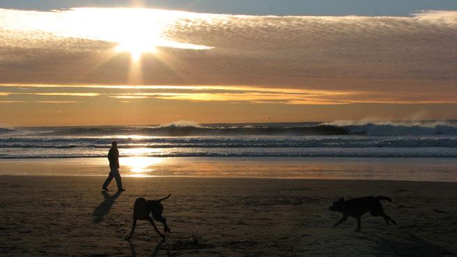 Ocean Beach – San Francisco